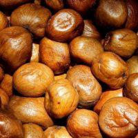 manketti-nut-hires